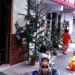 Christmas_tree_in_Taiwan_village